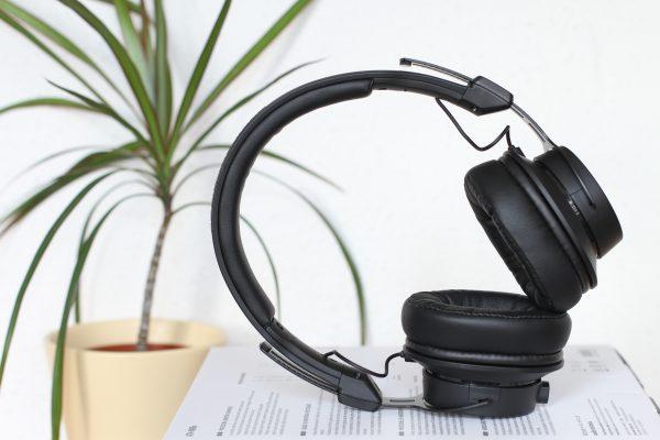 headphones, plant